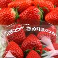 ichigo_s03.jpg